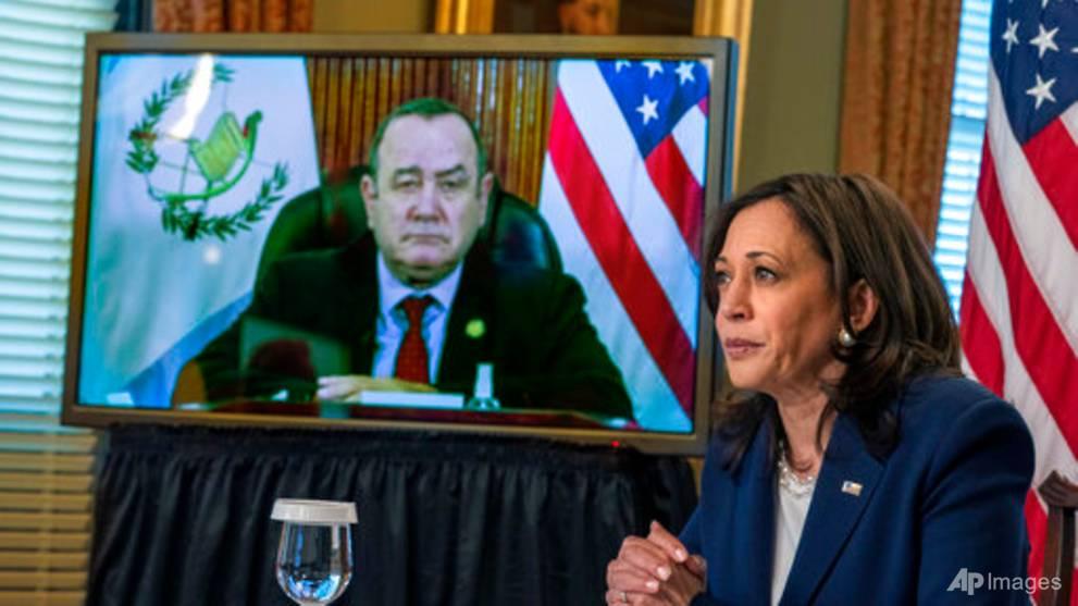 US VP Harris meets virtually with Guatemalan president